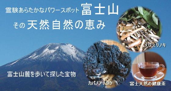 富士山の天然自然の恵み