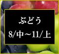ぶどうの商品一覧の画像