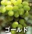 ゴールド(ぶどうの品種)