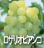 ロザリオビアンコ(ぶどうの品種)