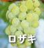 ロザキ(ぶどうの品種)