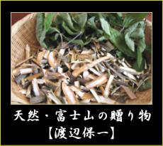 カバノアナタケ・メグスリノキ